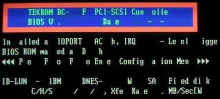 Garbled BIOS text output after heat damage